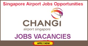 changi-airport-group-career