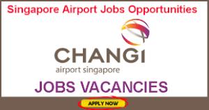 changi-airport-group-career