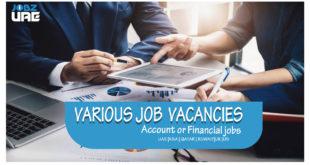 account or finance job vacancies