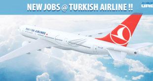 turkish airline career